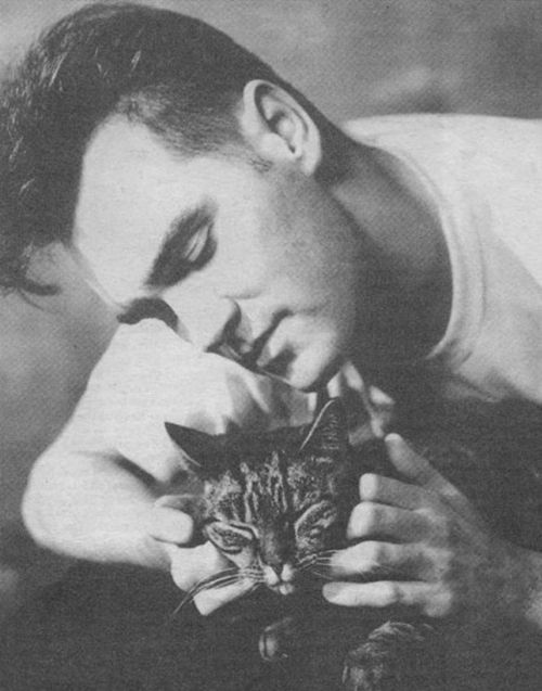 Morrissey and a cat