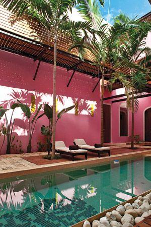 pool tropical